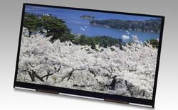 Ra mắt màn hình 10,1 inch độ phân giải 4K