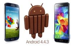 Samsung bắt đầu thử nghiệm Android 4.4.3 trên Galaxy S5 và S4