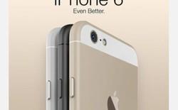 iPhone 6 bất ngờ xuất hiện trên website nhà mạng Trung Quốc