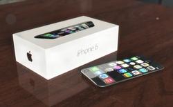 Kính Sapphire chỉ dành cho iPhone màn hình 5,5 inch?