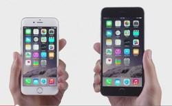 Chọn iPhone 6 hay 6 Plus?