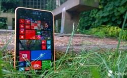 Lumia 630 và WP 8.1: những cú hích ngoạn mục của Microsoft