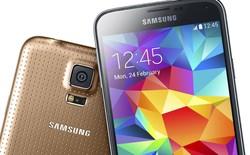 Vì sao ốp lưng của Samsung Galaxy S5 lại được đục lỗ?