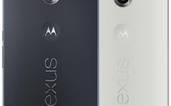 Xem Google Nexus 6 to như thế nào khi đọ dáng cùng đàn anh