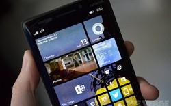 Đã có thể tải về Windows Phone 8.1 Developer Preview