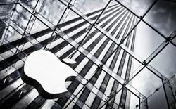 Làm việc tại Apple: Áp lực nhưng chuyên nghiệp hơn Google
