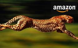 5 'móng vuốt sắc nhọn' mà Jeff Bezos tạo nên 'con báo' Amazon