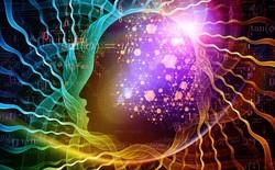 Cách đánh lừa cơ thể của não bộ mà chúng ta không hay biết