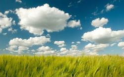 """WinZip ra mắt công cụ quản lý dữ liệu """"đám mây"""""""