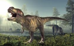 Sẽ ra sao nếu con người đánh nhau với khủng long bạo chúa