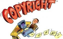 Google Search cập nhật thuật toán nhằm bảo vệ nội dung bản quyền