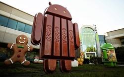 Hơn 20% thiết bị Android đã cập nhật lên phiên bản KitKat