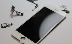 """iPhone 5S, iPhone 6 cũ chất lượng kém ồ ạt về VN, thương gia """"chân chính"""" than trời"""
