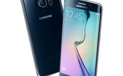 Samsung sẽ bán hết 45 triệu máy Galaxy S6 và S6 edge trong năm nay
