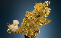 Các nhà khoa học tìm thấy vàng trong phân người, đang tìm cách chiết xuất