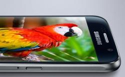 Thị trường màn hình AMOLED tăng trưởng mạnh, Samsung chiếm 95,8%