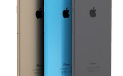 Apple sẽ trình làng liên tiếp 3 mẫu iPhone trong năm nay?