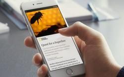Đọc báo nhanh trên Facebook: tương lai báo chí đi về đâu, ai là người hưởng lợi?