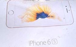 Lộ vỏ hộp iPhone 6s và iPhone 6s Plus hình ảnh cá chép hóa rồng?