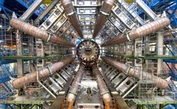 Chuyện gì sẽ xảy ra nếu bạn cho đầu vào máy gia tốc hạt?