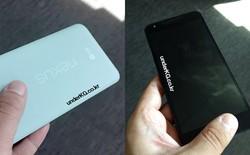 Ý tưởng về chiếc Nexus 5X do LG sản xuất