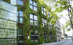 """Điểm tên những """"kiến trúc xanh"""" độc đáo trên thế giới"""
