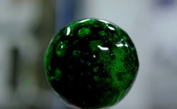 Video đẹp nhất về chất lỏng trong môi trường không trọng lượng