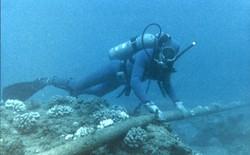 Những điều thú vị về hệ thống cáp ngầm dưới đáy đại dương