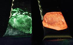 Đột phá làm dấu vân tay phát sáng sẽ giúp điều tra tội phạm nhanh hơn
