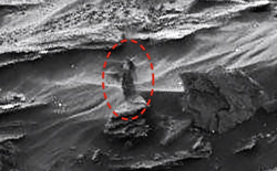 Vì sao chúng ta lại thấy người phụ nữ bí ẩn trên sao Hỏa?