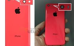 Lần đầu lộ diện iPhone mới, màn hình 4 inch, vỏ nhựa giống iPhone 5c