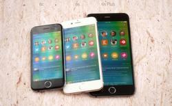 Ảnh dựng iPhone 6c màn hình 4 inch dựa trên các tin đồn