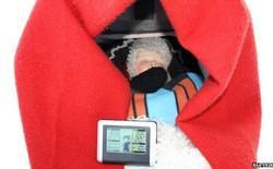 Trẻ em Bắc Âu được rèn luyện sức khỏe bằng cách ngủ ngoài trời lạnh 0°C