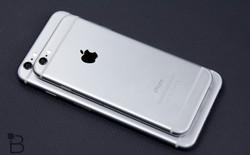Apple đã bắt đầu khởi động dây chuyền sản xuất iPhone mới