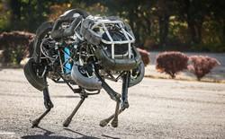 """""""Quân đoàn robot"""" - dự án tham vọng của Google mờ mịt vì thiếu lãnh đạo"""