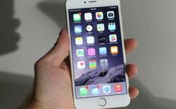 Rò rỉ giá iPhone 6s từ Walmart, đắt hơn 20 USD [Cập nhật]