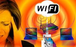 Chuyện lạ: Bị dị ứng với Wi-Fi, một phụ nữ Pháp được trợ cấp hơn 17 triệu VND/tháng