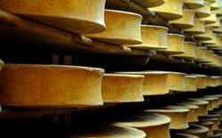Người Pháp dùng pho mát để sản xuất điện