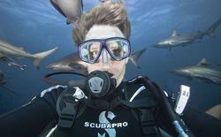 """[Video] Giật mình với nhiếp ảnh gia pose hình """"tự sướng"""" cùng cá mập"""