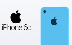 Ý tưởng iPhone 6C: sự trở lại của vỏ nhựa Polycarbonate