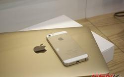 Tháng 6: Macbook 12 inch ghi nhận doanh thu đột phá, Apple vẫn giữ ngôi vương tại VN