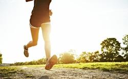 Chạy đường dài có thể khiến bạn bị teo não