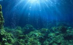 """Những mỏ khí mêtan dưới đại dương đang """"rò rỉ"""" ra ngoài do trái đất ấm lên"""