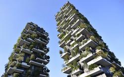 """Trồng cây lên nhà cao tầng, định nghĩa mới về """"kiến trúc xanh"""""""