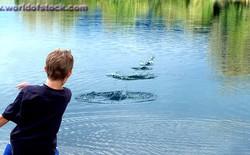 Kỷ lục lia đá 88 lần trên mặt nước