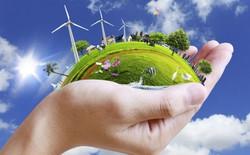Apple, Google, Microsoft là những công ty bảo vệ môi trường tốt nhất