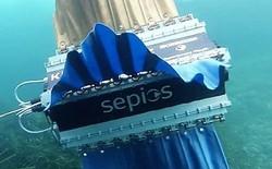 Sepios - Robot biết bơi lặn cực kỳ độc đáo