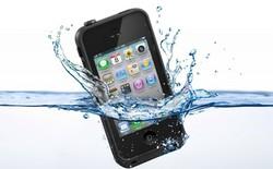 iPhone 6 Plus rơi xuống biển 2 tháng vẫn sống sót