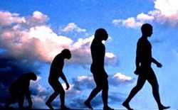 5 đặc điểm tiến hóa giúp con người vượt qua loài vật và thống trị Trái Đất