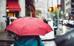 Mùa mưa bão này, bạn đã chuẩn bị gì cho smartphone của mình?